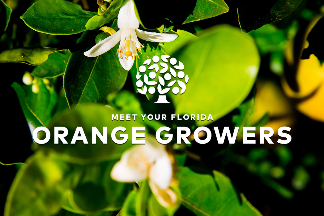 Meet Your Florida Orange Growers